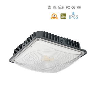 LED Slim Canopy-IP65